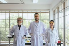 Group of scientists people standing together in laboratory,Successful teamwork and reserch working royalty free stock photography