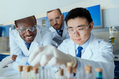 Group of scientists in protective eyeglasses working together in chemical laboratory Royalty Free Stock Photo