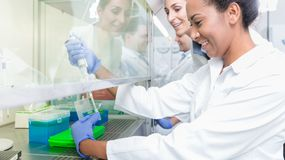 Group of scientists in research laboratory royalty free stock images