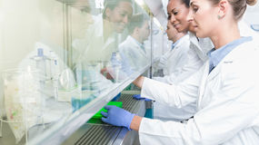 Group of scientists in research laboratory working under splashback stock photography