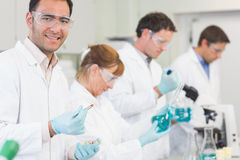 Group of scientists working at the laboratory Royalty Free Stock Photo