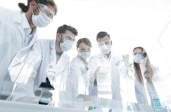 Scientists working with test tubes and microscope in the laboratory. Group of scientists working with test tubes and microscope in the laboratory Stock Image