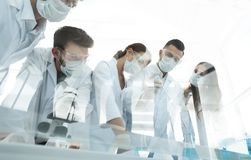 Scientists working with test tubes and microscope in the laboratory. Group of scientists working with test tubes and microscope in the laboratory Royalty Free Stock Photos
