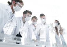 Scientists working with test tubes and microscope in the laboratory. Group of scientists working with test tubes and microscope in the laboratory Royalty Free Stock Image