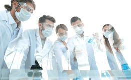Scientists working with test tubes and microscope in the laboratory. Group of scientists working with test tubes and microscope in the laboratory Royalty Free Stock Images
