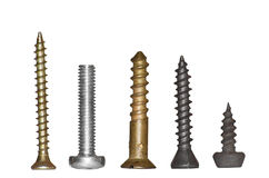 Group of screws. Group of different screws close up Royalty Free Stock Image