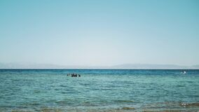 A group of scuba divers go diving in red sea, sunny day and clear water in Dahab, Egypt , slow motion, full hd