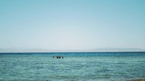A group of scuba divers go diving in red sea, sunny day and clear water in Dahab, Egypt , slow motion, 4k