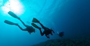 Group of scuba divers underwater Royalty Free Stock Photo