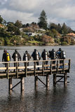 Group of scuba divers on wooden jetty Royalty Free Stock Images