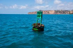 Group of seals including two babies sleep on a green buoy in the ocean off of the California coast royalty free stock photography