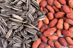 Group of nuts collection Royalty Free Stock Photography