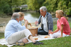 Group of senior friends having pic-nic in nature Royalty Free Stock Images