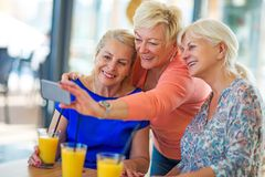 Group of senior friends taking a selfie Royalty Free Stock Images