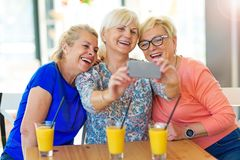 Group of senior friends taking a selfie stock image