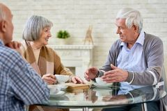 Group of Senior People Chatting by Tea. Group of senior people chatting and drinking tea enjoying time in retirement home, copy space stock photography