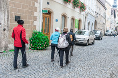 Group of senior people nordic walking Royalty Free Stock Images