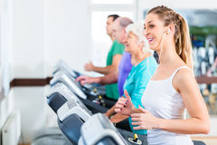 Group with senior people on treadmill in gym Stock Images