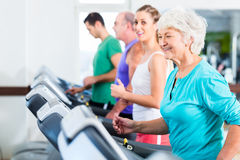 Group with senior people on treadmill in gym Royalty Free Stock Image