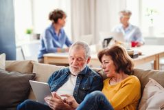 Group of senior people using laptops and tablets in community center club. royalty free stock photos