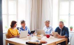 Group of senior people using laptops and tablets in community center club. royalty free stock photography