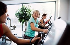 A group of seniors in gym with a young trainer doing cardio work out. stock images