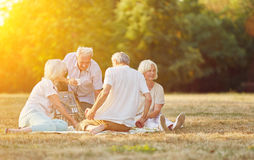 Group of seniors making a picnic. Happy group of seniors making a picnic in the park in summer Royalty Free Stock Photo