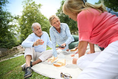 Group of seniors on a pic-nic Stock Photography