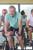 Group of seniors using spinning bikes Stock Images