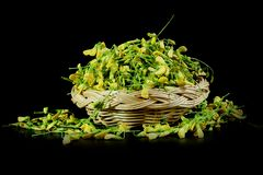 Group of Sesbania javanica flower with black background . A little yellow flower herb of Thailand tradition cuisine stock photography