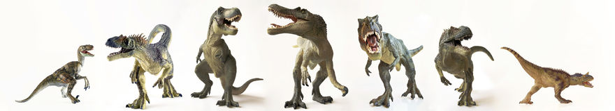 A Group of Seven Dinosaurs in a Row Royalty Free Stock Image