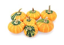 Group of seven small disc-shaped ornamental gourds. With green and orange markings, isolated on a white background Royalty Free Stock Image