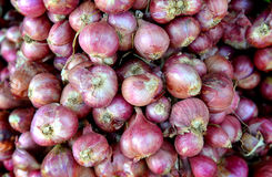 Group of shallot in the market Royalty Free Stock Images
