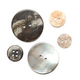 Group of shell buttons Royalty Free Stock Photo