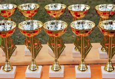 Group of shiny cups on a table during a sport award ceremony.  royalty free stock images