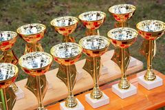 Group of shiny cups on a table during a sport award ceremony.  royalty free stock photography