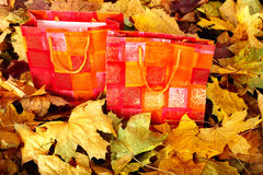 Group of shopping bag in fall foliage. Royalty Free Stock Photos
