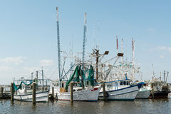 Group Shrimp Boats at Dock USA Gulf Coast Royalty Free Stock Images