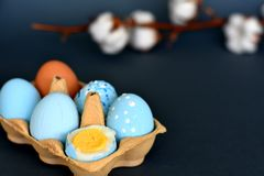 Sixpack of light blue colored Easter eggs with cotton branch in the background stock images