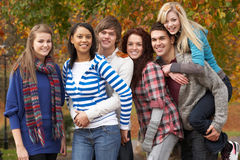 Group Of Six Teenage Friends Having Fun. In Autumn Park Stock Photos