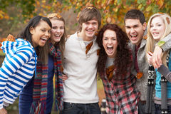 Group Of Six Teenage Friends Having Fun. In Autumn Park Stock Photo