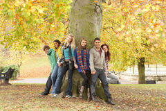 Group Of Six Teenage Friends Leaning Against Tree. In Autumn Park Stock Image