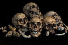 Group of skulls in genocide concept Stock Photo