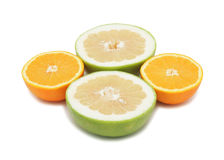 Group of sliced citrus fruits, isolated Royalty Free Stock Photo