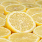 Group of sliced lemons Stock Photography