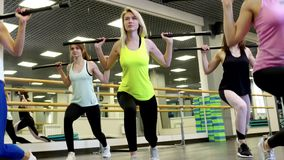 Group Of Slim Beautiful Young Women Doing A Barbell Squats. At The Gym During Group Workouts. Sports And Lifestyle Concept stock video footage