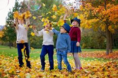 Group of small children in the park, having fun throwing leaves Stock Photos
