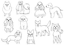 Group of small dogs hand drawn line art. Group of small dogs , hand drawn line art by pen Royalty Free Stock Image