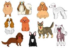 Group of small dogs hand drawn royalty free illustration