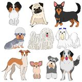 Group of small dogs hand drawn. Group of ten breeds of small dogs, hand drawn royalty free illustration